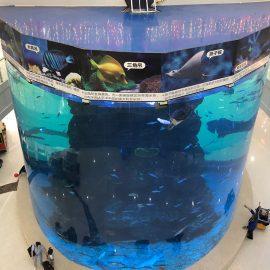 من ألواح أكريليك سميكة من 20 مم إلى 500 مم للأسماك الكبيرة الحديثة