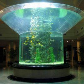 الزجاج pmma الحوض نصف اسطوانة perspex واضح خزان الأسماك