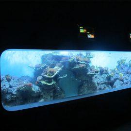 مصبوب اصطناعي أكريليك أسطواني حوض السمك الشفاف / نافذة عرض