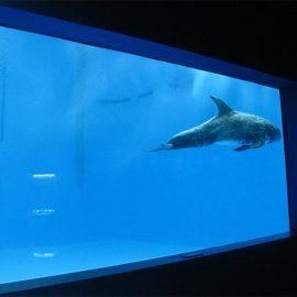 عالية الجودة حوض السمك أكريليك كبيرة / نافذة تحت الماء سميكة ورقة النوافذ