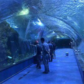 مشروع أكواريوم نفق أكواريوم في أحواض السمك العامة
